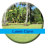Lawn and Landscape Eco-Friendly Fertilization